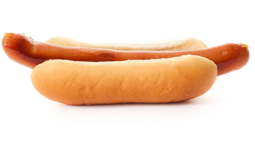 bklyn-dog